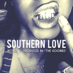 Novel - Southern Love Artwork