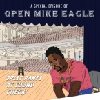 Open Mike Eagle - Ziggy Starfish (Anti-Anxiety Raps) ft. Gold Panda Artwork