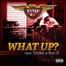 Pimp C ft. Drake & Bun B  - What Up Artwork