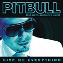 Pitbull ft. Ne-Yo &amp; Nayer - Give Me Everything Artwork