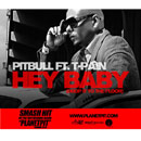 Pitbull ft. T-Pain - Hey Baby (Drop It to the Floor) Artwork