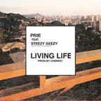Prie ft. Steezy Geezy - Living Life Artwork