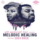 The Primeridian ft. Shev Rock - Melodic Healing Artwork
