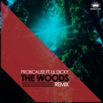 ProbCause - The Woods (Remix) ft. Lil Dicky Artwork