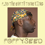 P.SO the Earth Tone King - Poppy Seed Artwork