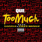 Que ft. Lizzle & Trey Songz - Too Much Artwork