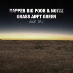 Rapper Big Pooh & Nottz - Grass Ain't Green ft. Blu Artwork