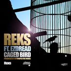 REKS - Caged Bird Artwork