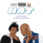 Ric Wilson - Nat ft. GLC Artwork