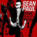 Sean Paul - She Doesn't Mind Artwork