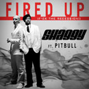 Shaggy ft. Pitbull - Fired Up (F The Rece$$ion!) Artwork
