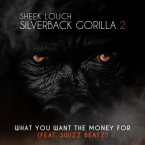 Sheek Louch - What You Want The Money For ft. Swizz Beatz Artwork