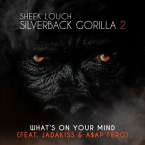 Sheek Louch - What's On Your Mind ft. Jadakiss & A$AP Ferg Artwork