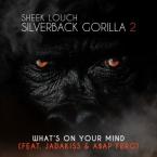 Sheek Louch - What's On Your Mind ft. Jadakiss & A$AP Ferg Artwork