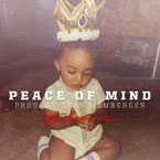 Skeme - Peace of Mind Artwork