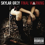 Skylar Grey - Final Warning Artwork