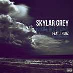 Skylar Grey ft. Thurz - Final Warning (MisterMike Remix) Artwork