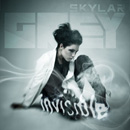 Skylar Grey - Invisible Artwork