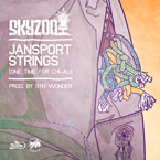 Skyzoo - Jansport Strings Artwork
