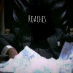 Sliim Bambino - Roaches Artwork