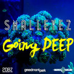 Going DEEP Artwork