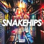 Snakehips ft. Syd (of The Internet) - Gone Artwork