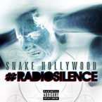 Snake Hollywood - Radio Silence Artwork