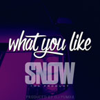 Snow Tha Product - What U Like Artwork