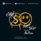 SRH ft. Mike Posner - Got That Artwork