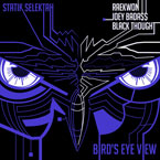 Statik Selektah ft. Raekwon, Joey BadA$$ & Black Thought - Bird's Eye View Artwork