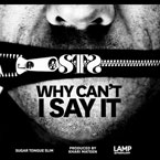 STS - Why Can't I Say It Artwork