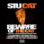 Stu Cat - Diamonds for Breakfast Artwork