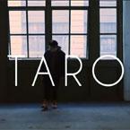 TARO - Let the Dollar Circulate Artwork