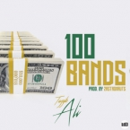 Tayyib Ali - 100 Bands Artwork