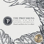 The Procussions - Fall to Fly Artwork