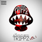 Trippz Michaud - Idiots Artwork
