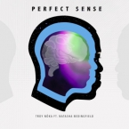 TROY NoKA - Perfect Sense ft. Natasha Bedingfield Artwork
