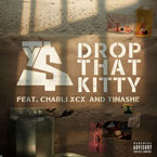Ty Dolla $ign ft. Charli XCX & Tinashe - Drop That Kitty Artwork