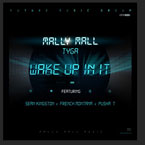 Tyga x Mally Mall ft. Sean Kingston, French Montana & Pusha T - Wake Up In It Artwork