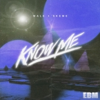 Wale - Know Me ft. Skeme Artwork