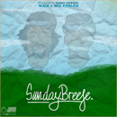 Wale ft. Wiz Khalifa - Sun.Day.Breeze (Sunny Norway Remix) Artwork