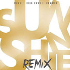 Wale ft. Rick Ross & Common - Sunshine (Remix) Artwork