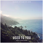 Witt Lowry - Used To You Artwork