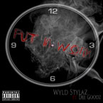 Wyld Stylaz ft. Dee Goodz - Put in Work Artwork