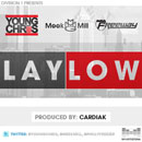 Young Chris ft. Meek Mill & Freeway - Lay Low Artwork
