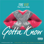 Yung Berg ft. Kevin Writer - Gotta Know Artwork