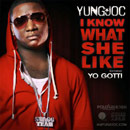 Yung Joc ft. Yo Gotti & Stuey Rock - What She Like Artwork