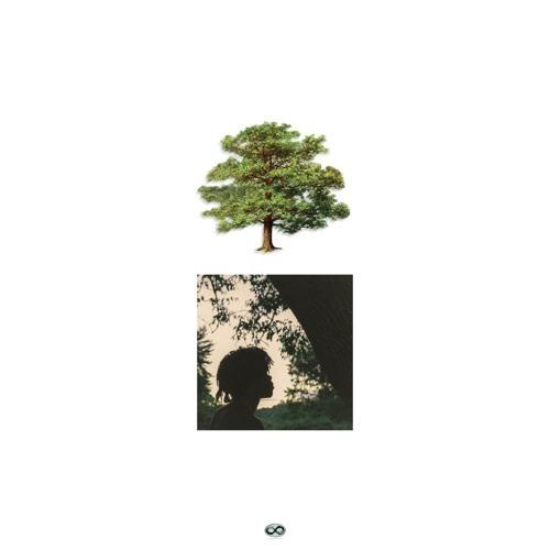 11166-trapo-riot-saba