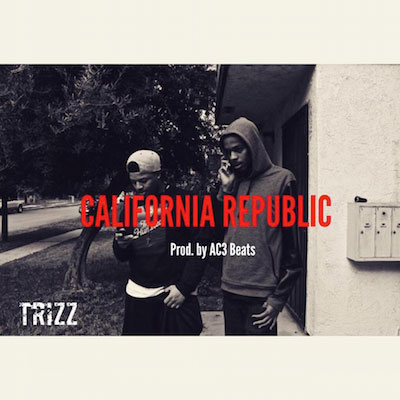 Trizz - California Republic Artwork