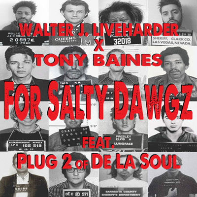 For Salty Dawgz Cover